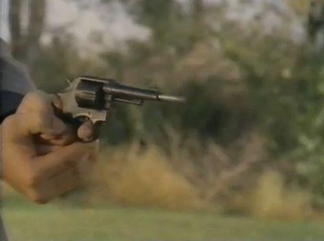 blowdart into gun