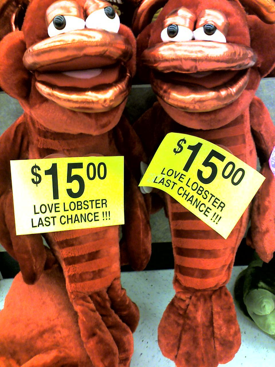 Love Lobsters