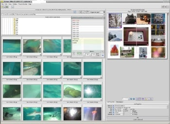 Lay Out Perfect Photo Pages With Qimage Ultimate | PCWorld