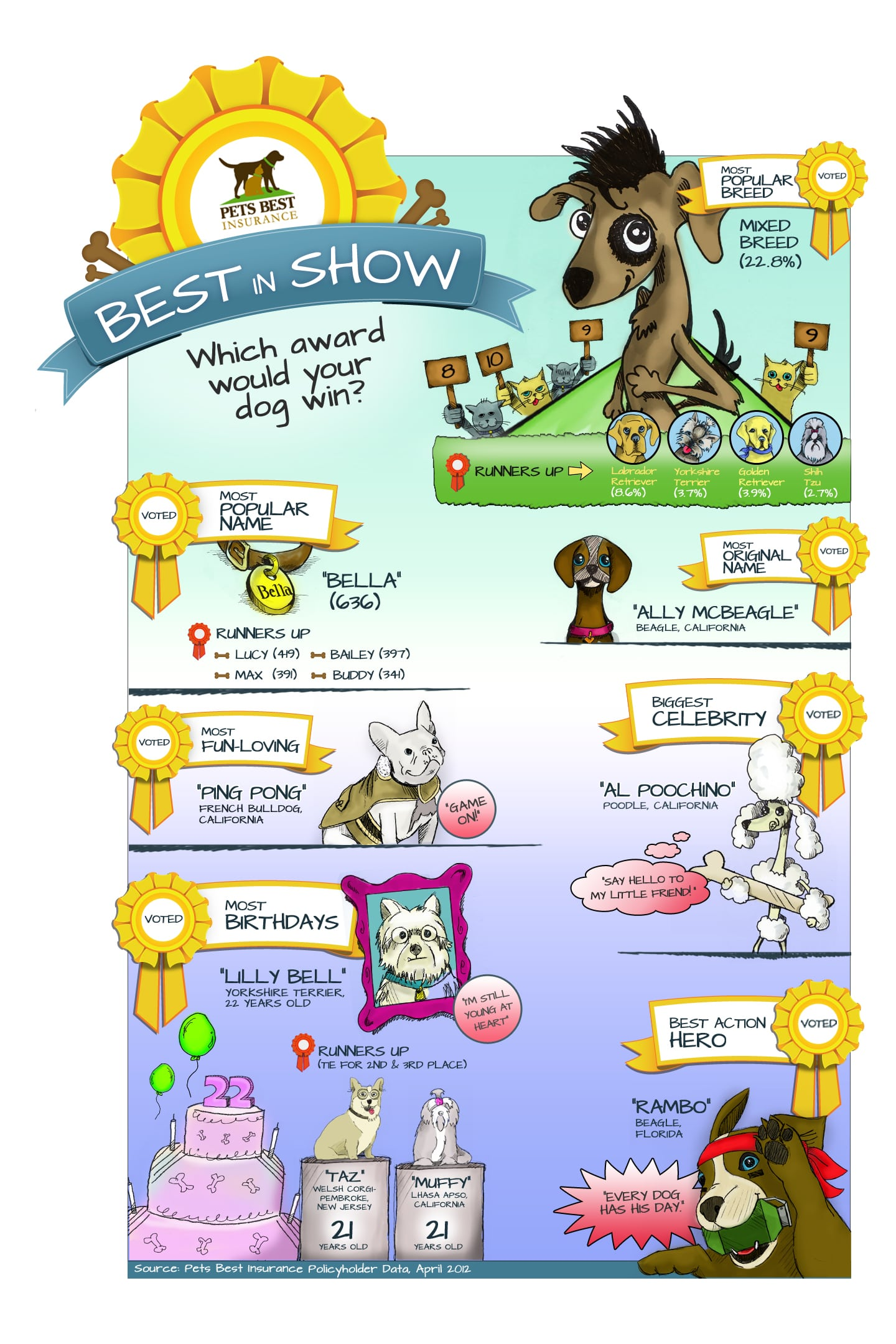 The Pets Best Insurance Dog Best In Show Awards