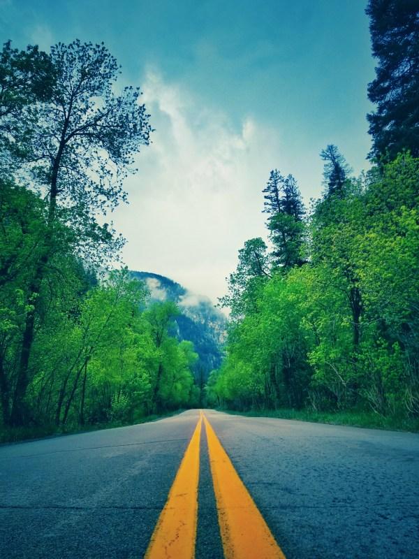 my blogging break path