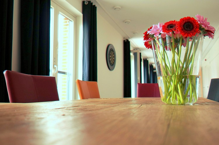 Free stock photo of wood, flowers, house, table