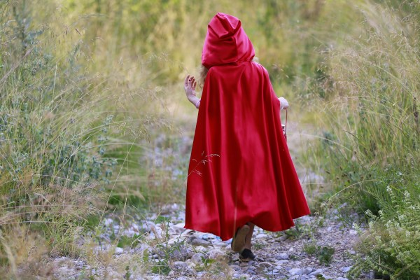 Girl With Red Hood Walking on Rocky Path Between Grasses