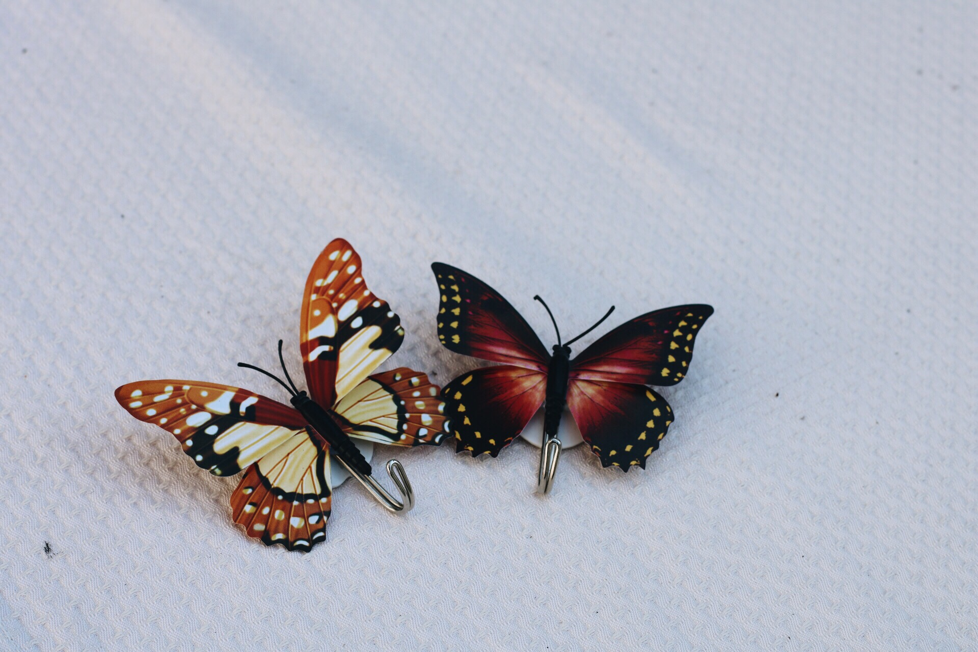 Brown And Black Butterfly Shower Curtain Hooks On White