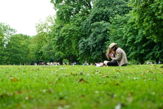 People Sitting On Green Grass Field