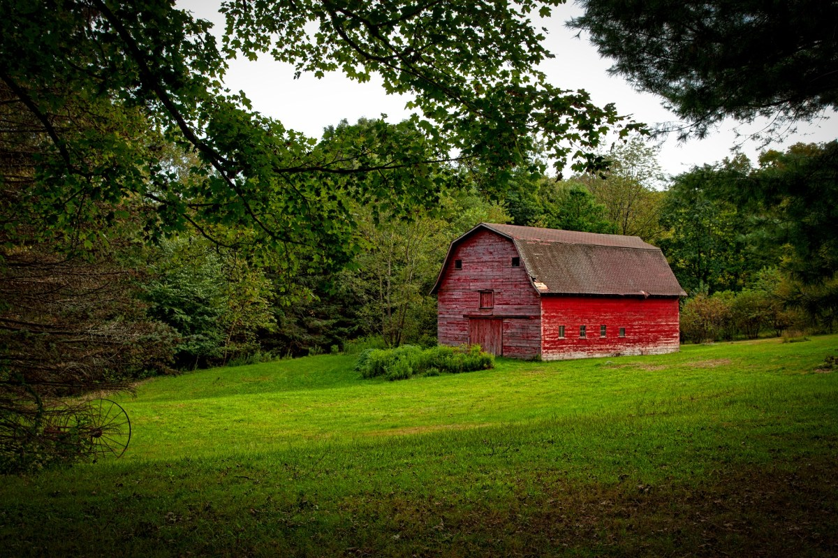 Barn in the Middle of Lawn Surrounded With Trees during Daytime