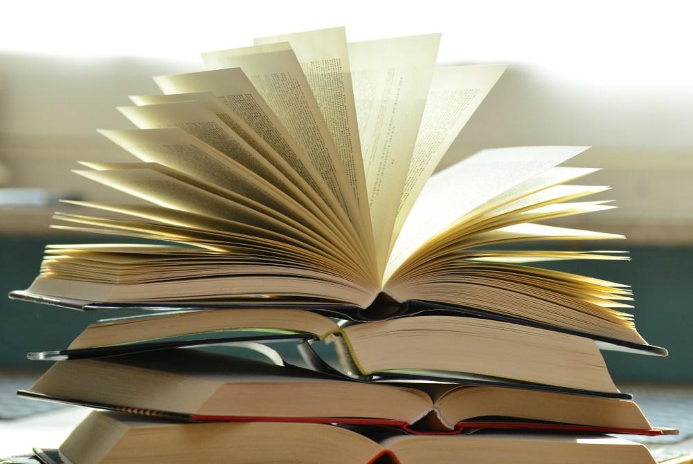 Barrett Hays Books