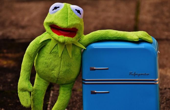 Kermit the Frog Plush Toy