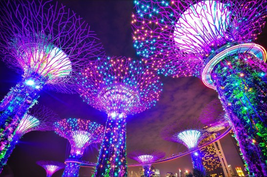 5 Attractions that have Transformed Singapore in the Last Decade