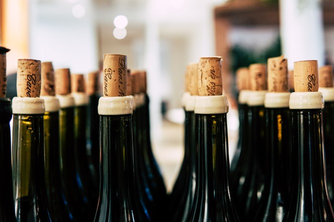 Close-up Photo of Wine Bottles With Cork