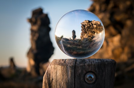 macro, outdoors, perspective
