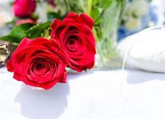 Marvelous Ways for Making Fresh Cut Roses Last Forever