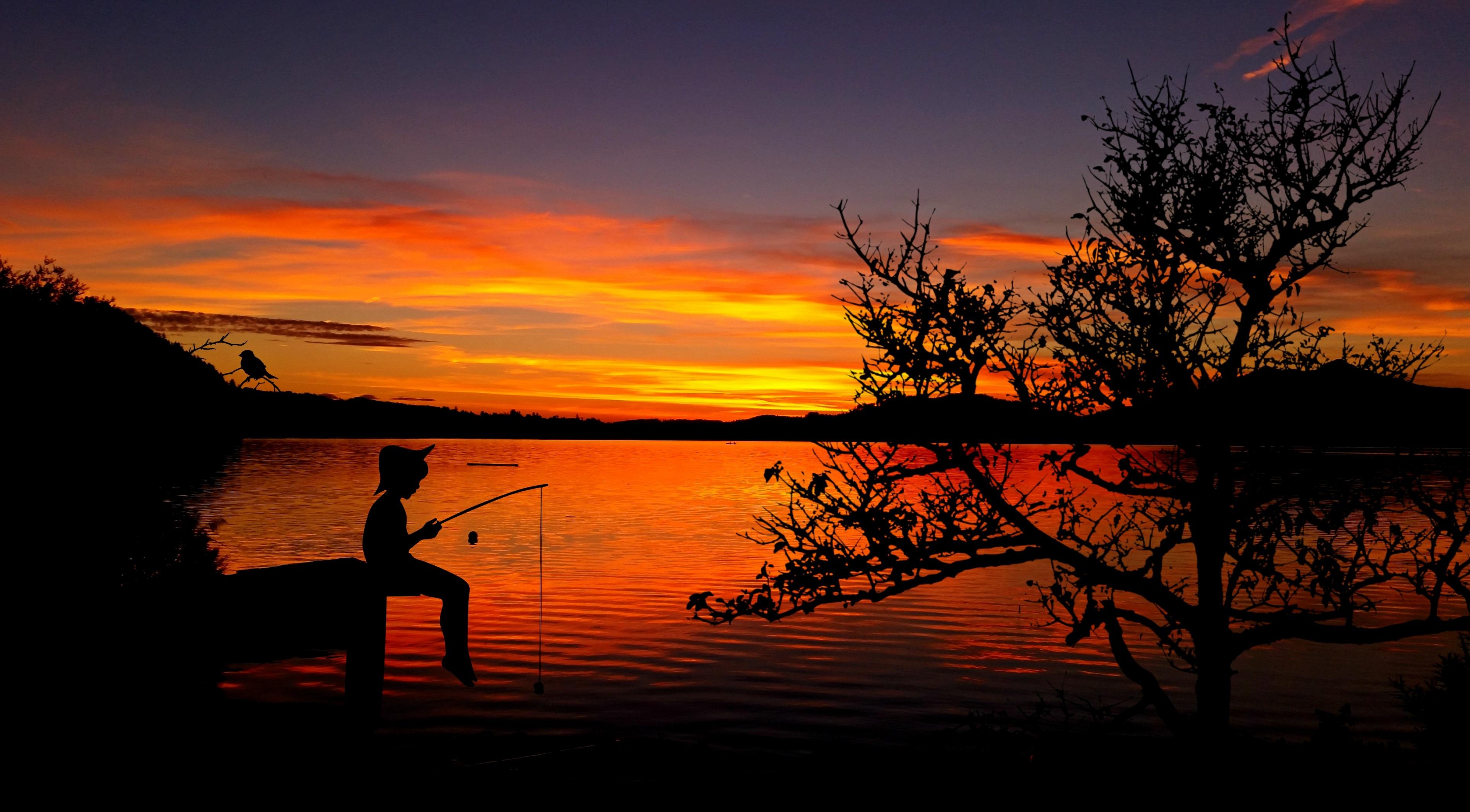 Kostenloses Foto zum Thema: angeln, boot, fischen