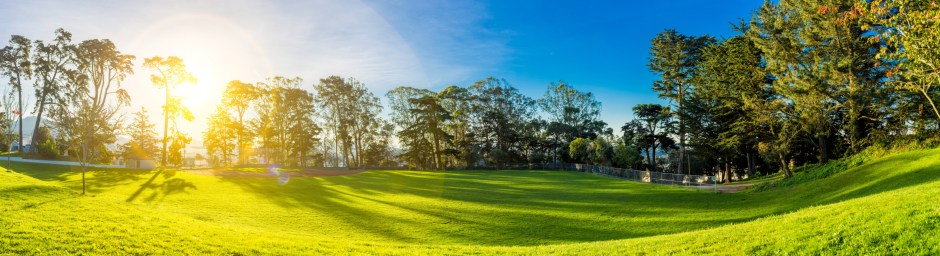 Case Study: My Experience With Lawns