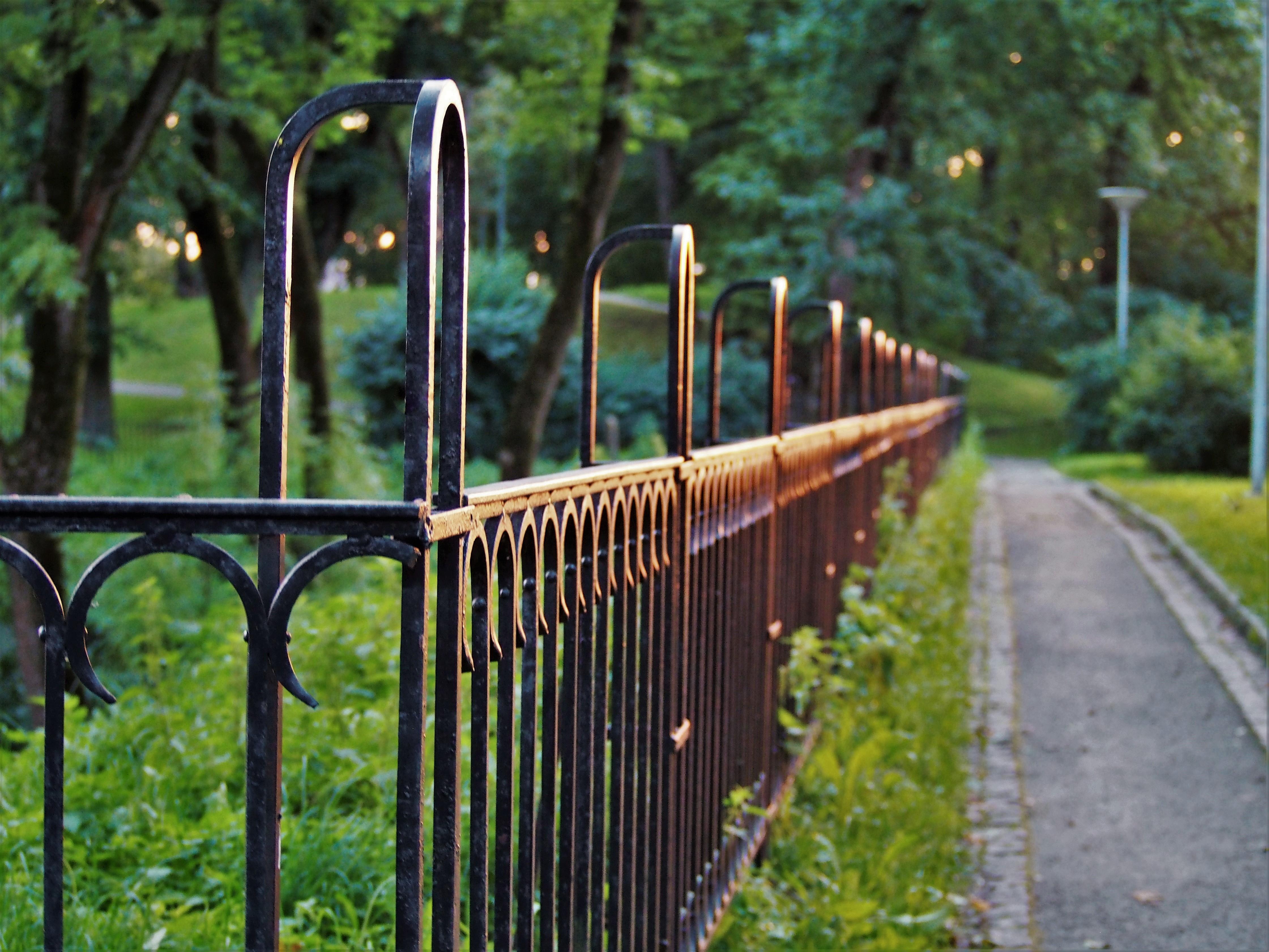 Black Metal Fence Free Stock Photo