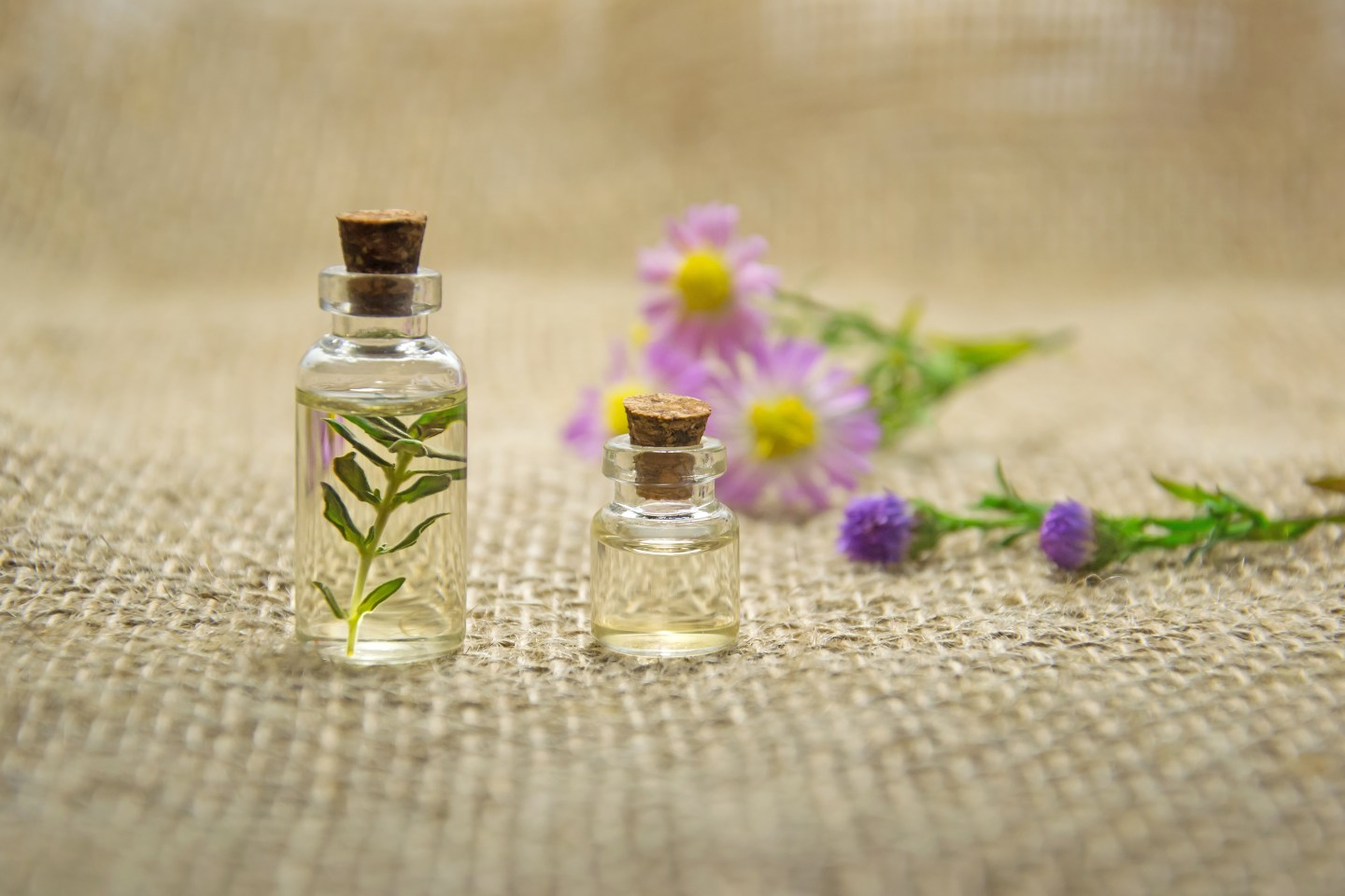 pexels photo 672051 - Sustainable Essential Oils Are Not Cheap