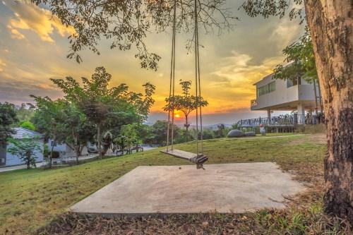 Balanço cinzento na foto da árvore durante o Sunest
