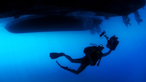 Person In Green Scuba Diving Suit 183 Free Stock Photo