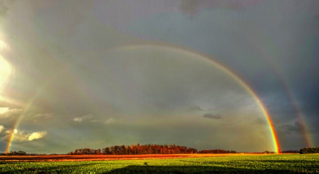 Photography of Green Grass Field With Rainbow