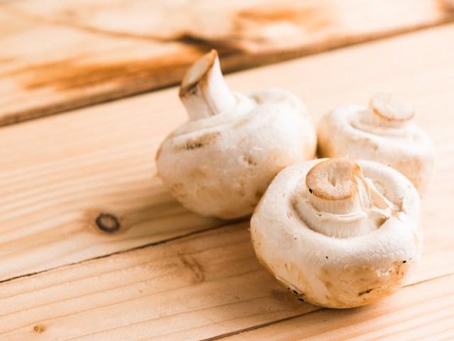 ciupercile au cupru