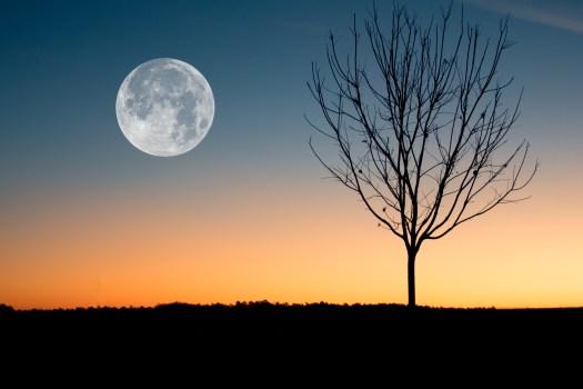 Ilustración de la luna que muestra durante la puesta del sol