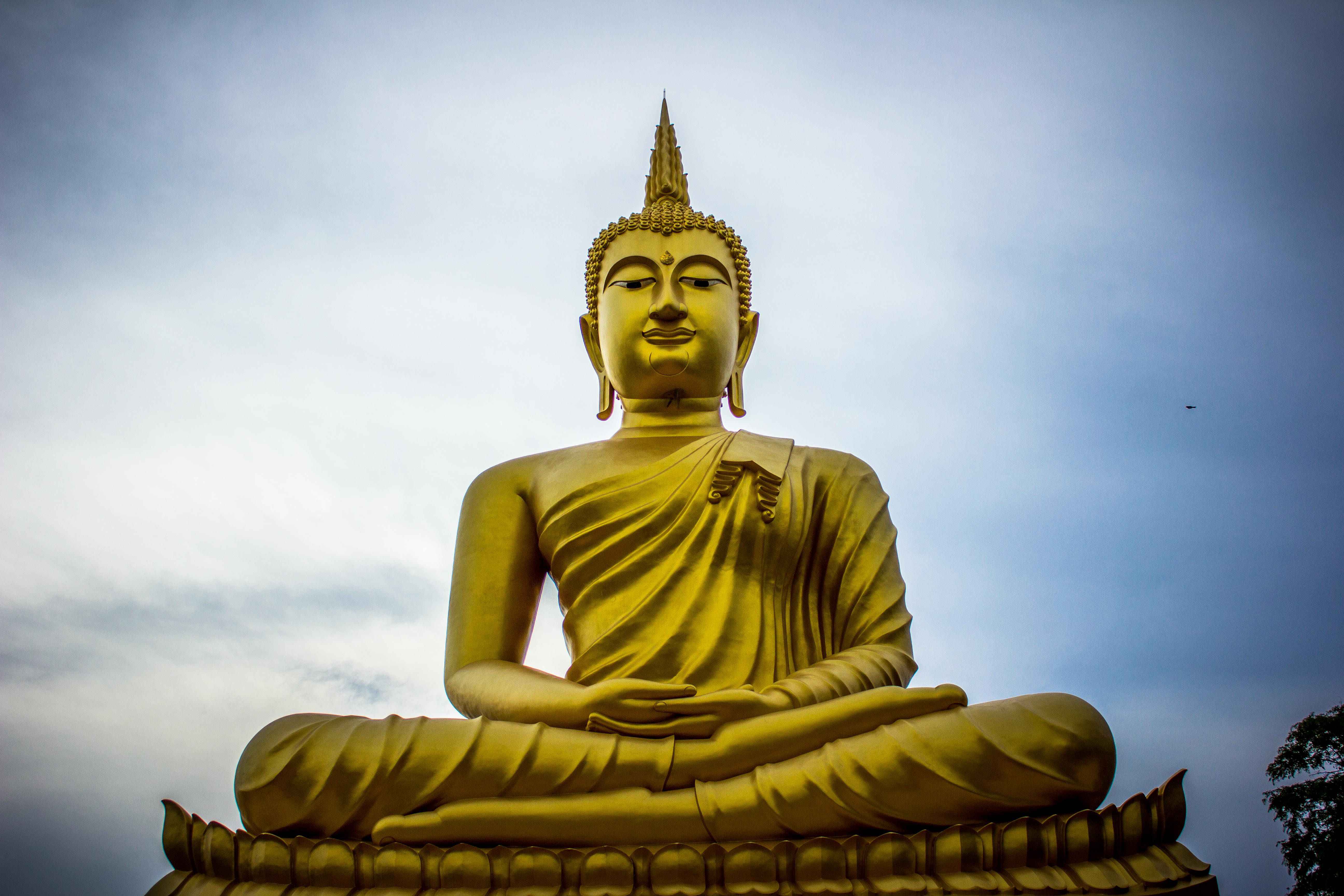 500 Amazing Buddha Photos Pexels Free Stock Photos