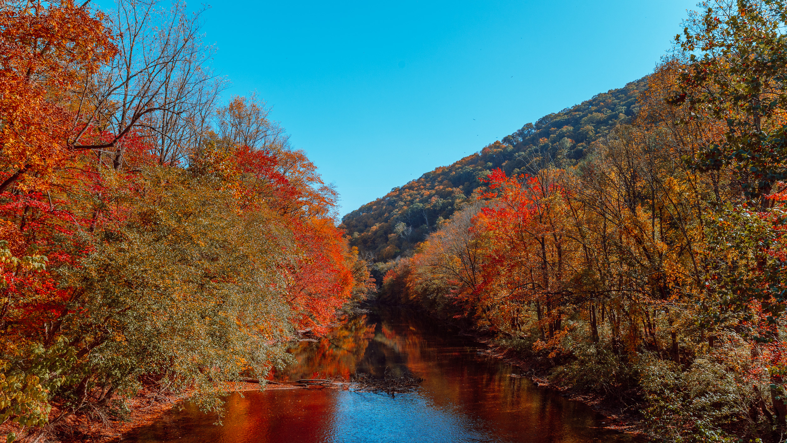 [Photo Story] Brilliant blues and fiery fall colors on display at Swatara State Park