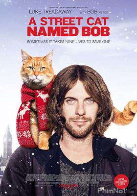 Phim Chú Mèo Đường Phố Tên Bob - A Street Cat Named Bob (2016)