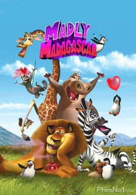 Phim Madagascar: Valentine Điên Rồ - Madly Madagascar (2013)
