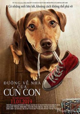 Phim Đường Về Nhà Của Cún Con - A Dog's Way Home (2019)