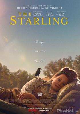 Phim Chim Sáo - The Starling (2021)