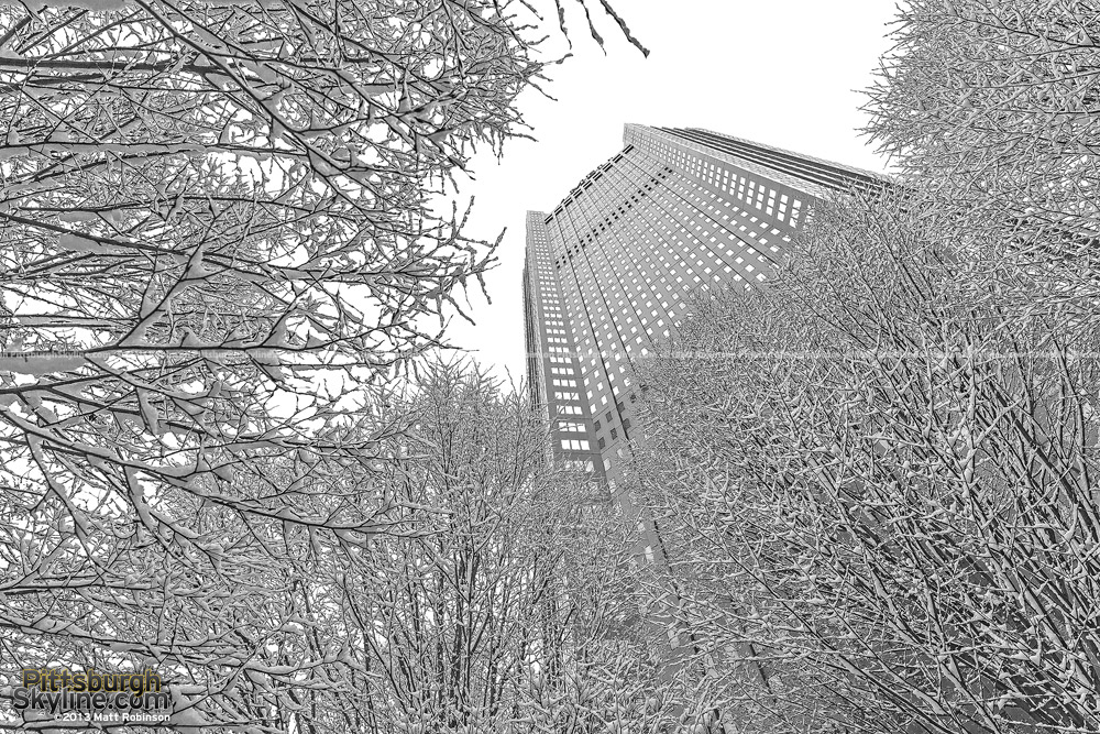 Snow covers tree with BNY Mellon Center