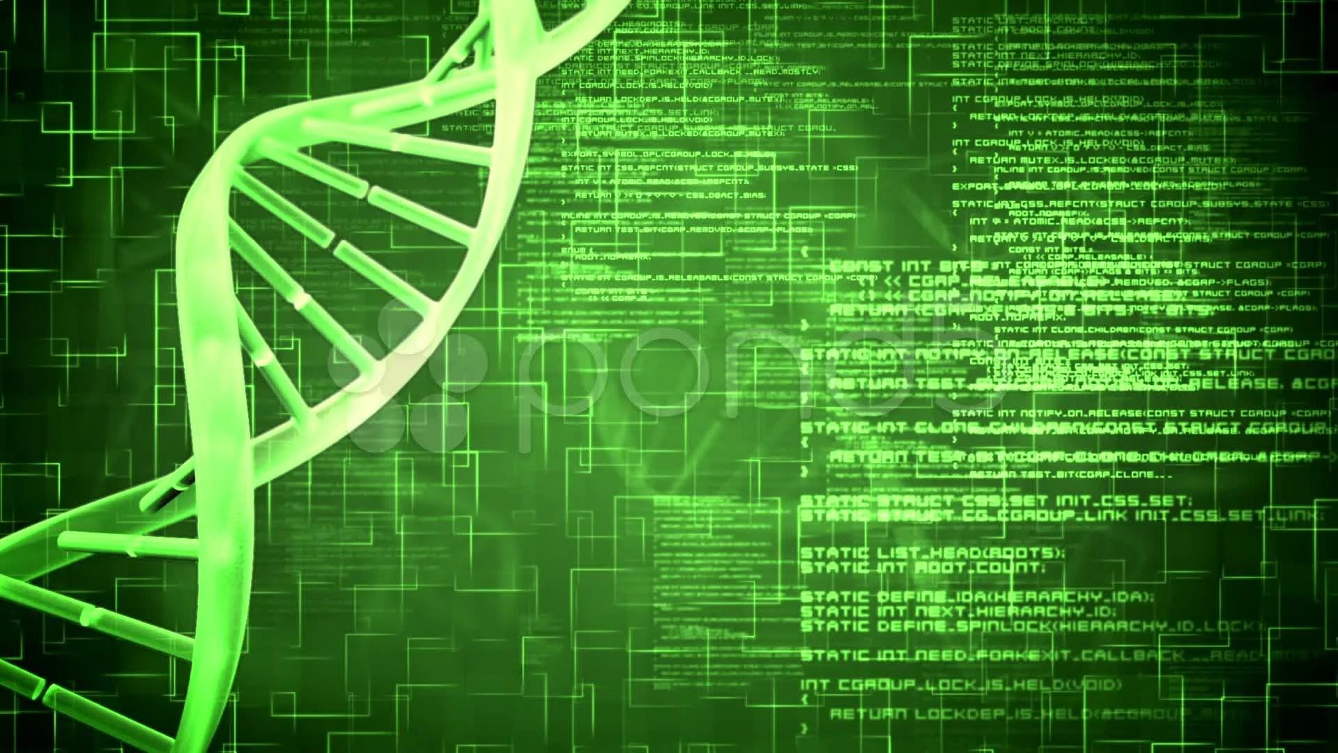 Amd Human Genetics Patterns Of Heredity Worksheet
