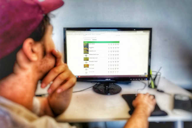 Online Cannabis Websites