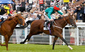 Heavy Metal - Glorious Goodwood 2/8/2012