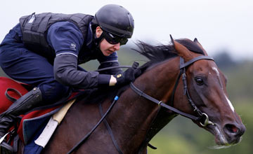 Camelot and Joseph O'Brien during a piece of work Leopardstown Photo: Patrick McCann 16.08.2012