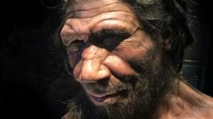 De l'ADN hérité des Néandertaliens favorise les formes graves de la COVID-19