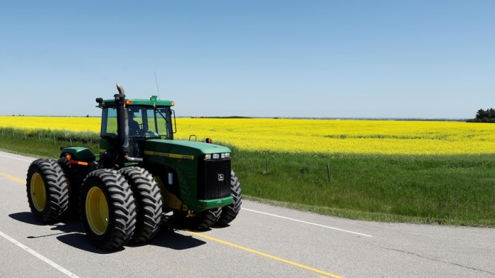 A farmer driving his tractor passes a field of canola.