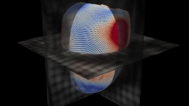 Image d'un coeur vu par un logiciel