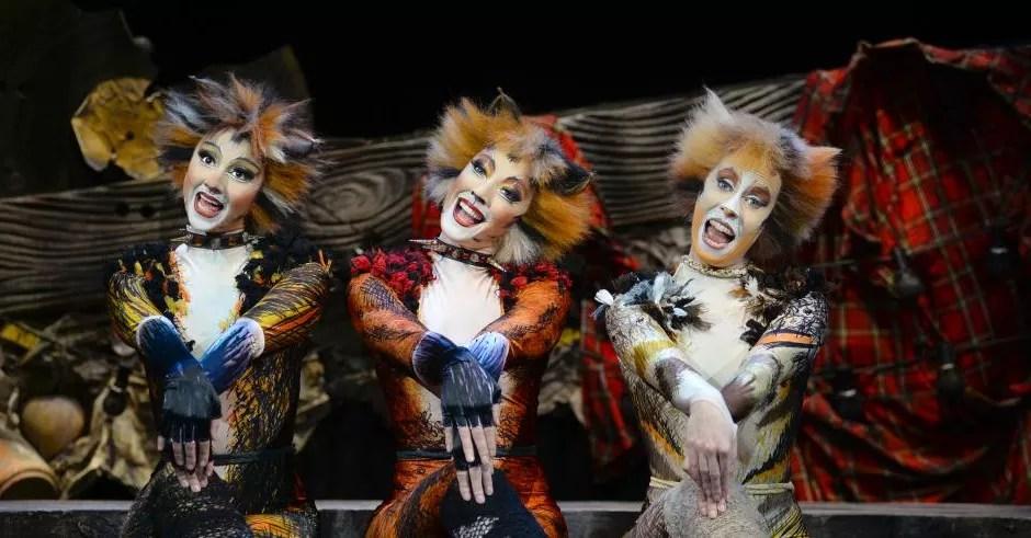 The vereinigte bühnen wien is showing the world famous musical in a new version of the original. Cats Musical In Wien Tickets Hotel Ab 125 Euro Reisereporter De