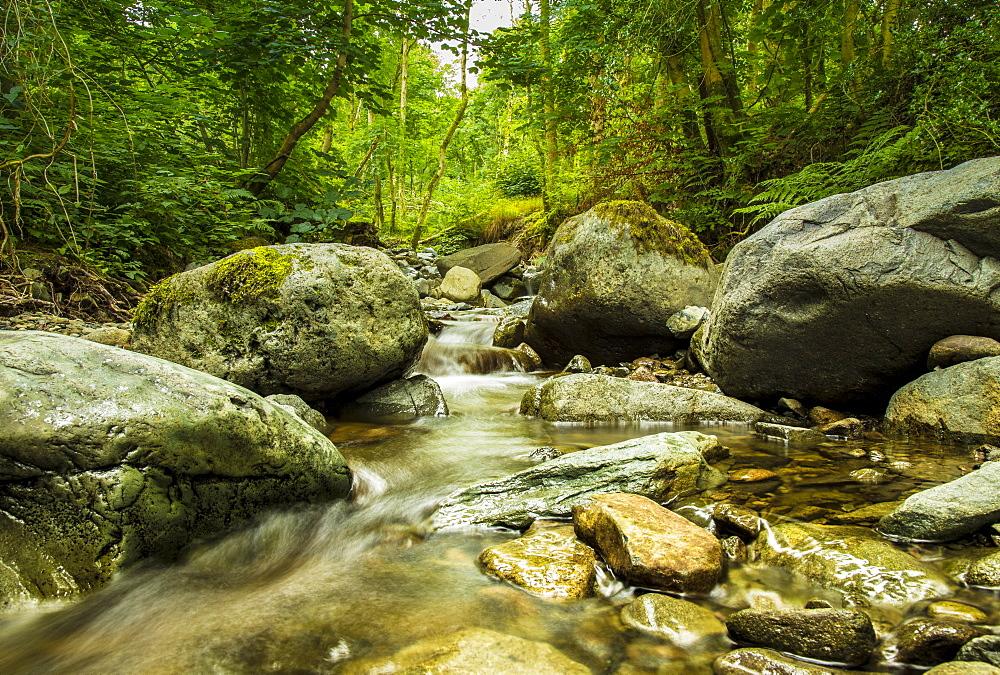 Brockle Beck in Springs Wood, Cumbria image