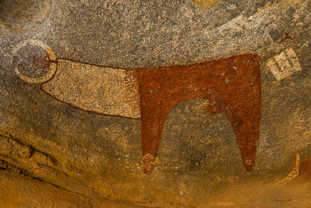 Stock photo of Cave paintings in Lass Geel caves, Somaliland, Africa