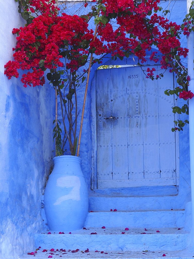 Blue painted house in Mexico image