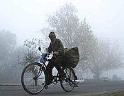 Un indiano in bici nella nebbia (foto Ap)