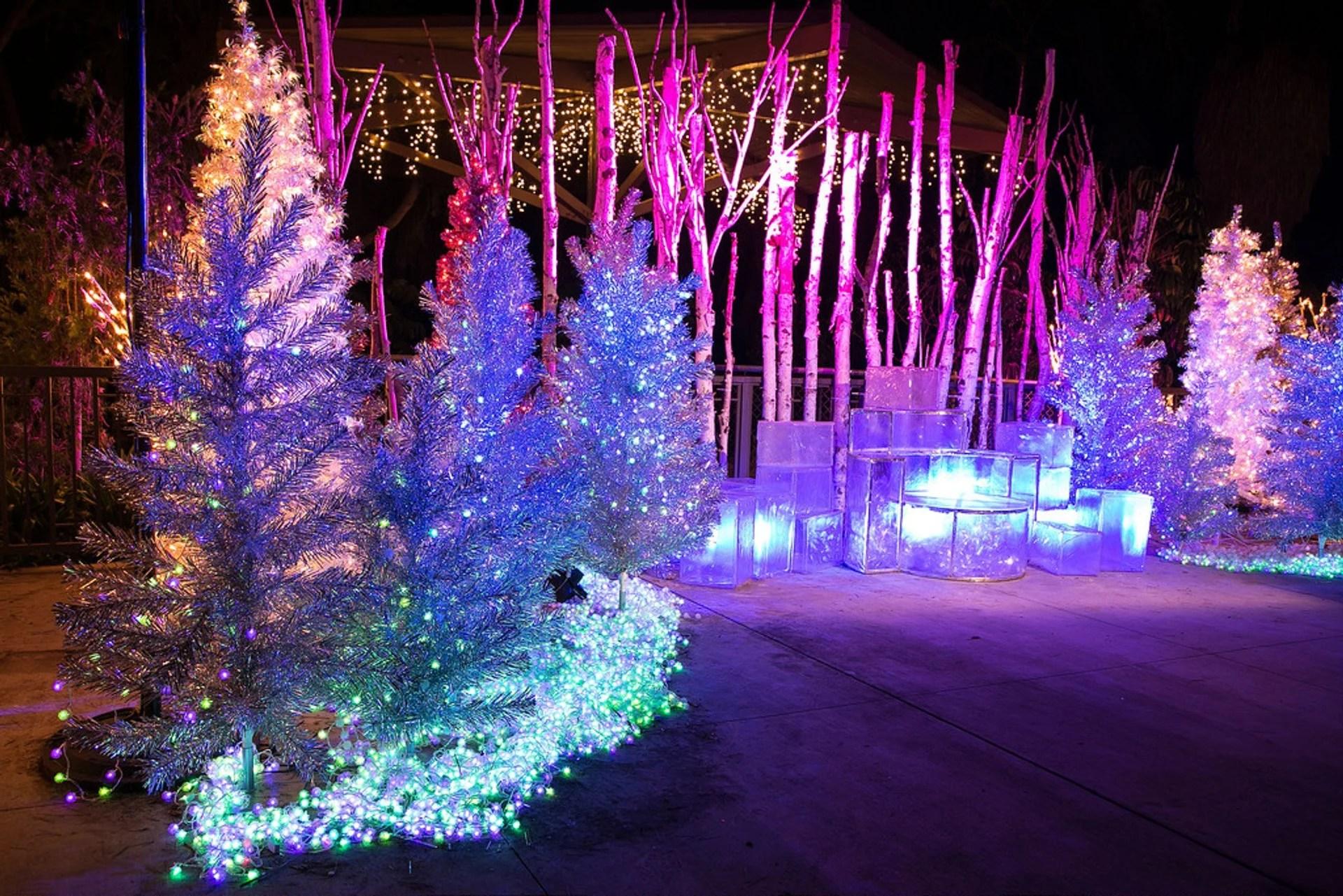 La Zoo Lights Hours