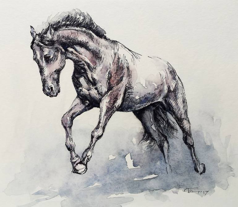 Horse 43 Drawing By Georgi Todorov Saatchi Art