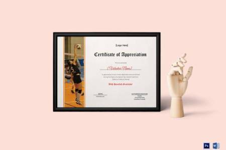 27  Best Printable Certificate of Appreciation Templates   Sample     Volleyball Appreciation Certificate Template