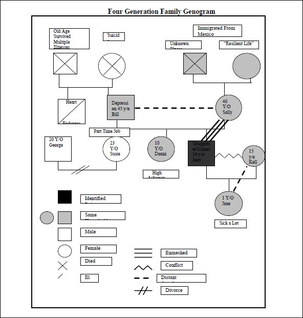 Sample Genogram Template 15 Free Documents In PDF Word