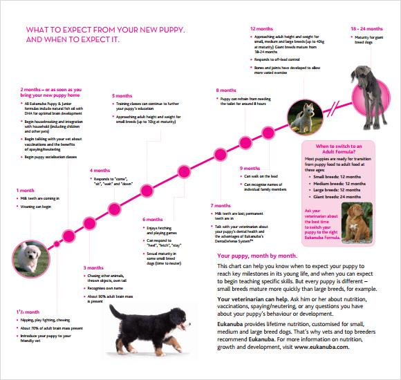 Mixed Breed Dog Growth Chart