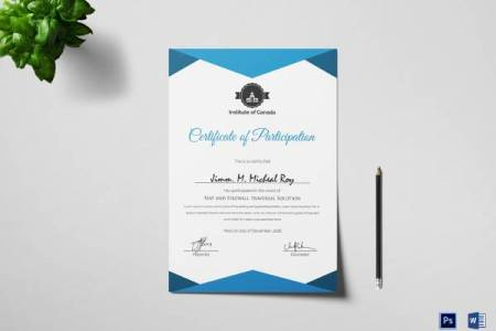 28 Microsoft Certificate Templates Download for Free   Sample Templates Sample Certificate of Participation Template